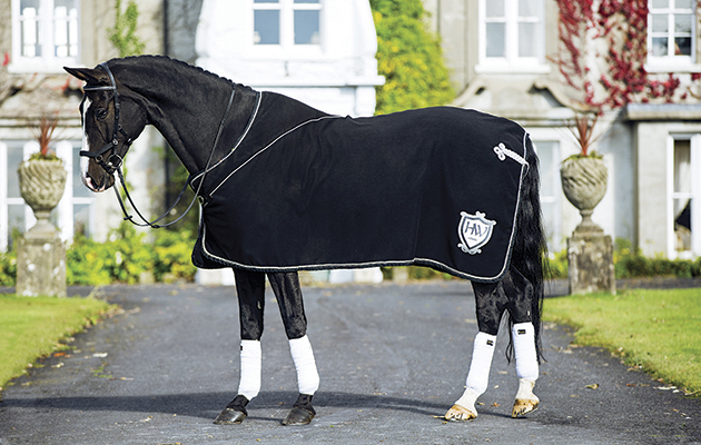 Superb TAGS: Horse Rugsshow Rugs