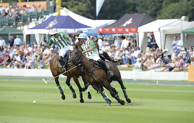 8 things you've always wanted to know about polo