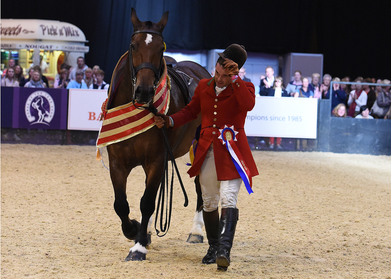STARRY NIGHT ridden by Robert Walker for Camilla Neame, Champion in Class 38, Maxi Cob of the Year Championship, during Horse Of The Year Show at the NEC Birmingham, West Midlands, UK between 07-11th October 2015