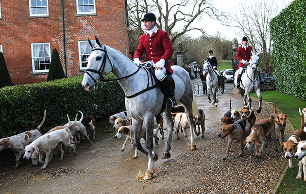 Rowan Cope (Master and Huntsman for the day on his Birthday) outside Fawsley Hall, during the Pytchley Hunt only grey (