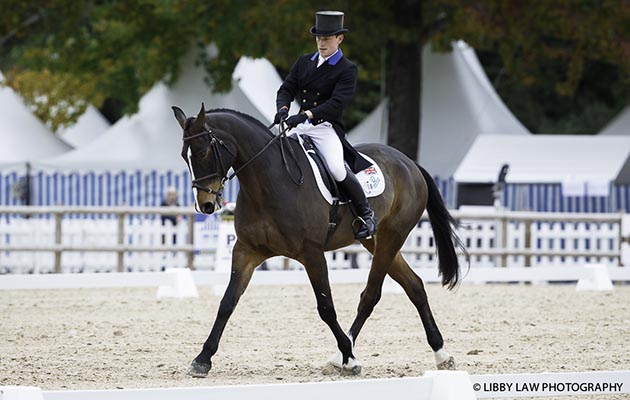 GBR-Simon Grieve (CORNACREW) INTERIM-10TH: CCI4* FIRST HORSE INSPECTION: 2015 FRA-Les Etoiles de Pau CIC2* (Thursday 22 October) CREDIT: Libby Law COPYRIGHT: LIBBY LAW PHOTOGRAPHY