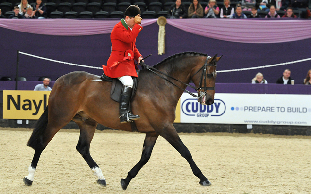 Vantage-Point-Champion-Hunter-of-the-Year-ridden-by-Robert-Walker-and-owned-by-Jill-Day
