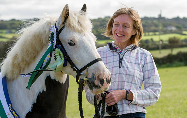 World Horse Welfare's rehomed horse of the year awards
