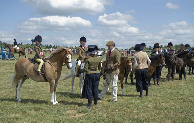 Line up of lead rein M&M (monksfield hunstman and charlotte tuck winners)