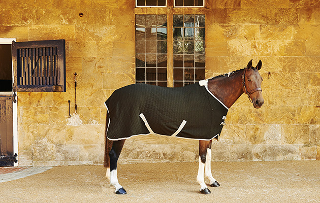 A Versatile And Smart Cooler Rug From Derby House S Elite Collection This Is The Quality Choice For Travel Cooling Or Layering