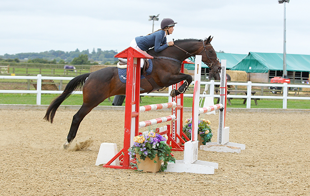 RoR Elite Showjumping Champion 15 Bluegrass Hopper credit SBM Photographic_