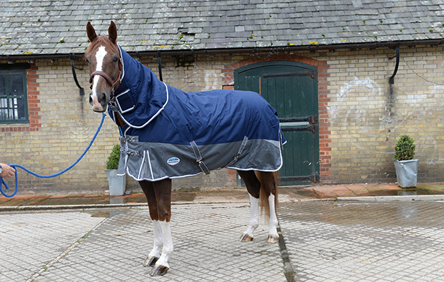 Review Of Turn Out Rugs Rug No5 Weatherbeeta At Wild Farm Equestrian