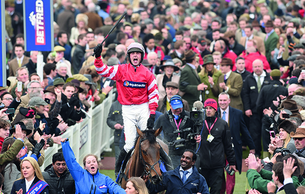 Cheltenham Festival on TV