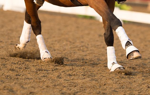 Michael Eilberg & Marakov (314) - Horse Health Grand Prix Freestyle Championship - LeMieux National Dressage Championships 2014 - Stoneleigh Park, Warwickshire, United Kingdom - 21/09/2014