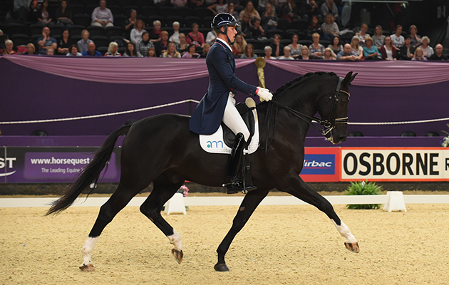 riding downward transitions AMD DON ROSSO II ridden by Matt Frost for Dedi Leech & Matt Frost during the Mount St John Dressage Future Elite Championship, during Horse Of The Year Show at the NEC Birmingham, West Midlands, UK between 07-11th October 2015