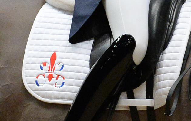 classic dressage logo