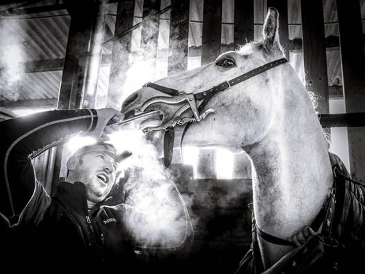 Humans put an amazing amount of themselves on their furry counterparts. Its a facinating realtionship.  James the equine dentist works on Ash during a routine scale and grind treatment.