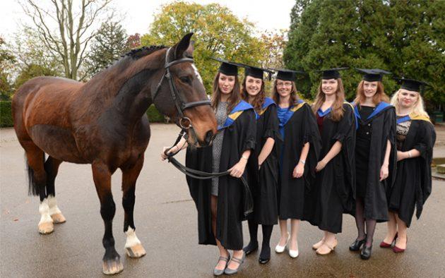 Start Your Equine Career At Moreton Morrell College