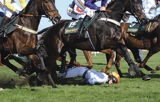 The Grand National 2011