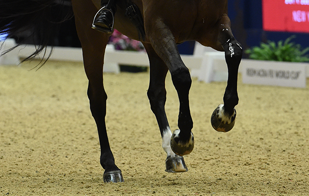 Carl Hester riding Nip Tuck during the Reem Acra FEI World Cup Dressage Grand Prix Freestyle at The London International Horse Show 2015 at Olympia, London , UK on 16th December 2015
