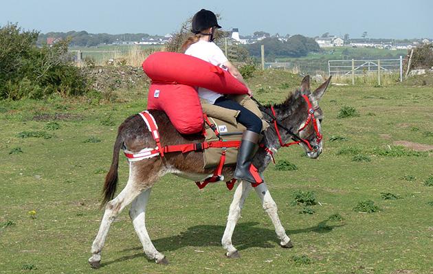 emergency saddle