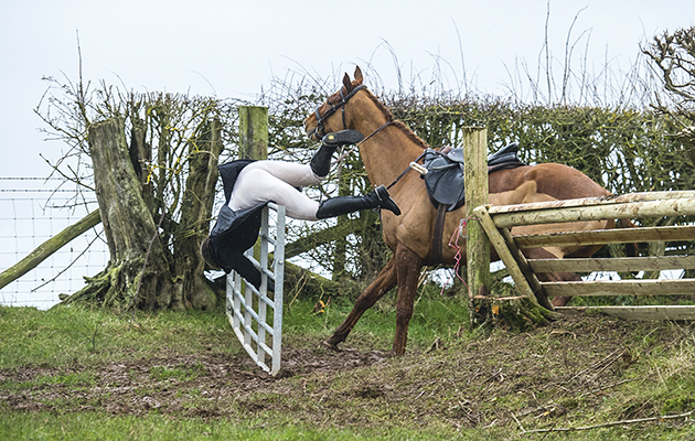 7 things people say when you have a horse-related injury - Horse & Hound