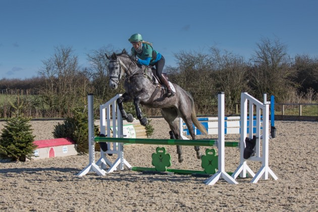 how to teach young horse to be a good jumper