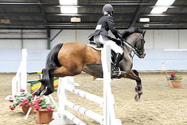 unaffiliated indoor show jumping