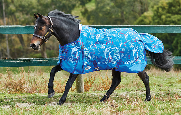 7 Funky Lightweight Turnout Rugs To Embrace Spring In Style