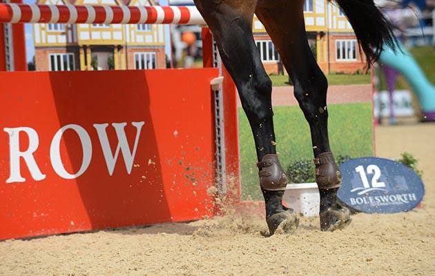hind legs jumping