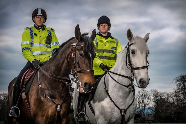 gloucestershire police horses