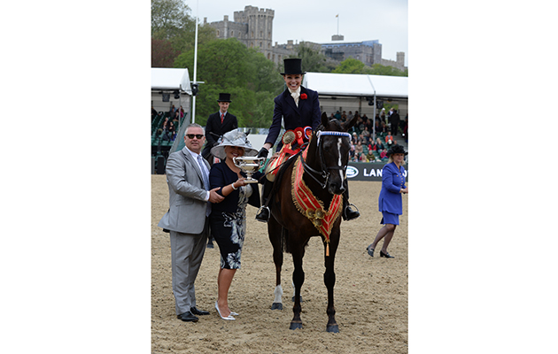Angharad Ellis Owen riding Lingswood Lad, Count Robert Orssich Hack Championship during Friday of the Royal Windsor Horse Show, in the grounds of Windsor Castle in Windsor in the county of Berkshire, UK  on 13th May 2016