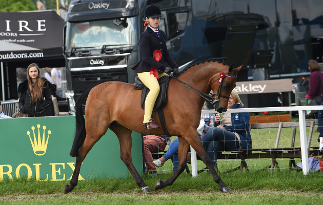 Georgina Holmes riding Wilderness Early Bird, Champion Show Pony Championship during Saturday of the Royal Windsor Show, in the grounds of Windsor Castle in Windsor in the county of Berkshire, UK  on 14th May 2016