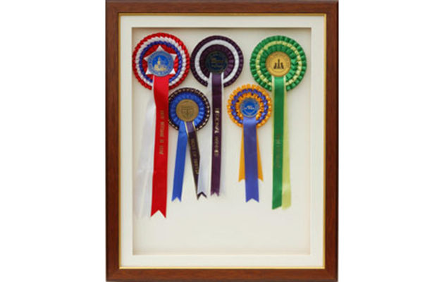 7 Rosette Display Hangers To Show Off Your Hard Work