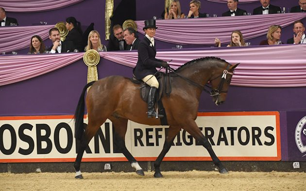Jayne Ross riding Broadshard Simplicity at HOYS 2015