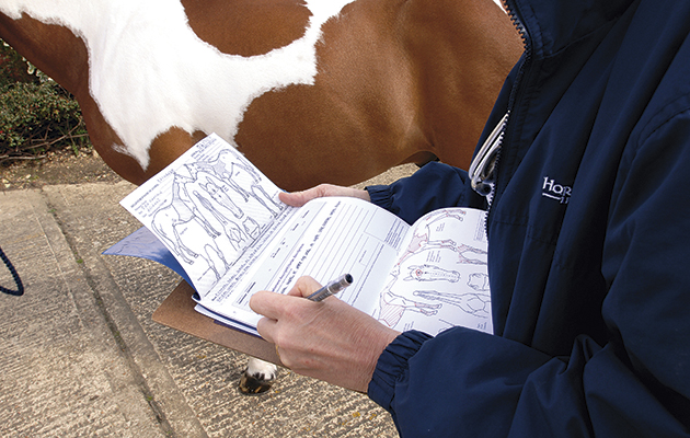 vetting a horse with paperwork and passport forms