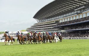 Runners in the Gold Cup pass the impressive grandstand