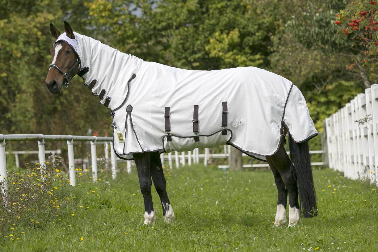 Looking For A Fly Rug With Belly Protection Don T Miss