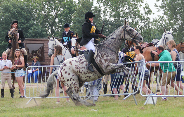 Drama in Festival of Hunting relay - Horse & Hound