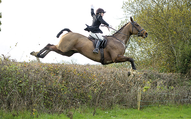 H&H hunting correspondent Carina Evans hails a cab over a Blackmore and Sparkford Vale hedge