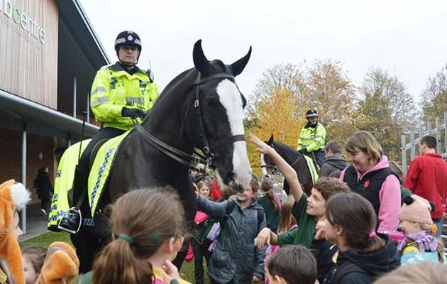 Caesar police horse