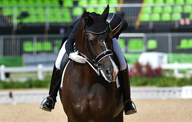 Tuesday s scoop from eastern hay eventing connect for Charlotte dujardin
