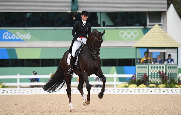 Multi-medalled dressage horse Donnperignon retires  71bf7216f