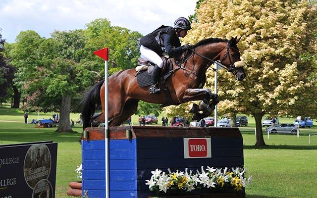Blenheim Horse Trials entries Seigneur Medicott