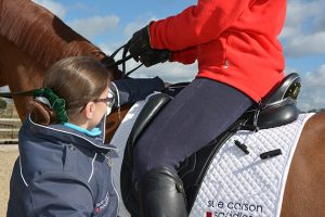 scs_adjust-air-flock-rider-mounted