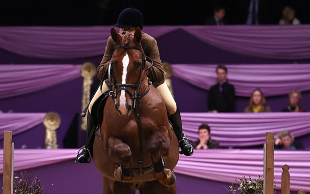 Fiona Hirst  riding DARTANS BARRACK owned by Fiona Hirst winner of the Cuddy Working Hunter of the Year Championship during HOYS in the NEC in Warwickshire in the UK on 5th October 2016