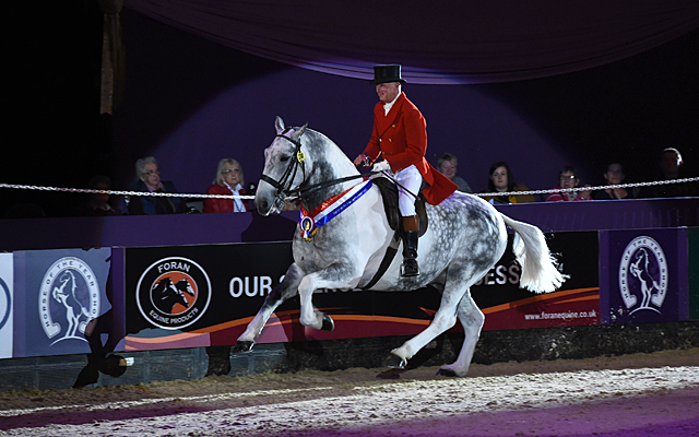Allister Hood riding OUR CASHEL BLUE owned by Caroline Tyrrell, Champion in the Supreme Horse of The Year Championship during HOYS in the NEC in Warwickshire in the UK on 9th October 2016