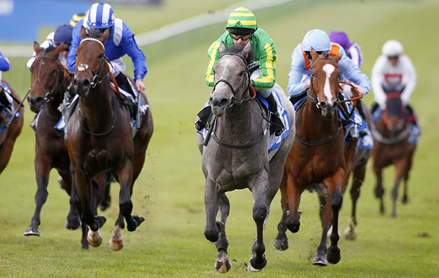 "Mrs Danvers and Richard Kingscote (green and yellow) winning The Newmarket Academy Godolphin Beacon Project Cornmallis Stakes Newmarket 7.10.16 Pic Dan Abraham-racingfotos.com  THIS IMAGE IS SOURCED FROM AND MUST BE BYLINED ""RACINGFOTOS.COM"""