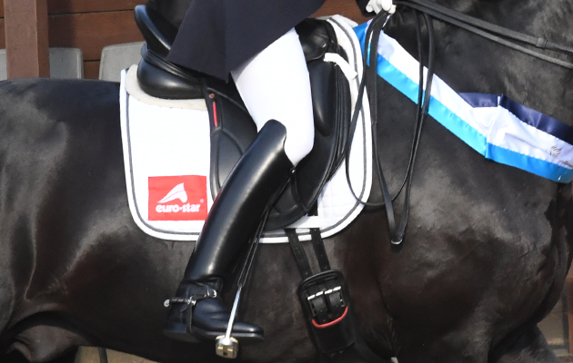'I'm five months pregnant' says British Olympic dressage rider - Horse & Hound