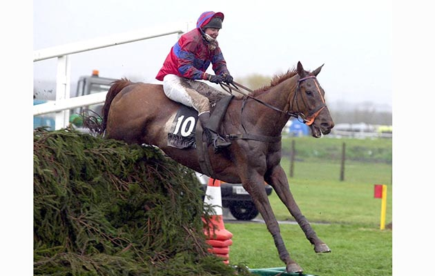 RED MARAUDER with R Guest wins at Aintree 7 April 2001. Photo by Martin Lynch / Racingfotos.com.