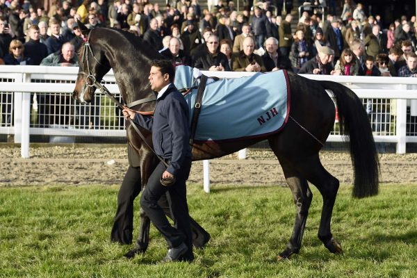 Sprinter Sacre does one final turn up the Cheltenham hill, before being led away into retirement, by his long time groom, Sarwah Mohammed. 13-11-16