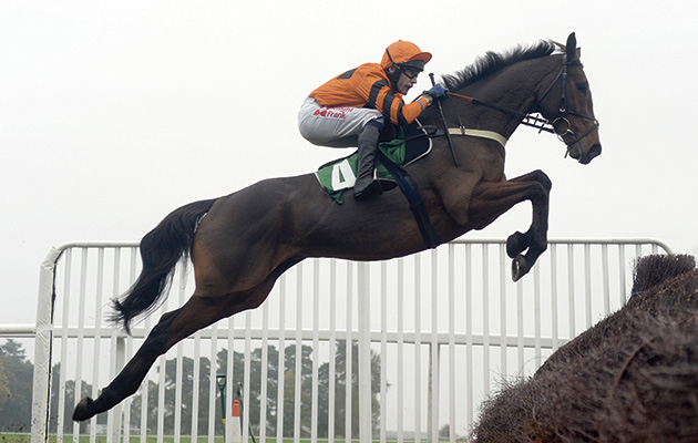 You Ve All Seen What He S Capable Of Thistlecrack Takes
