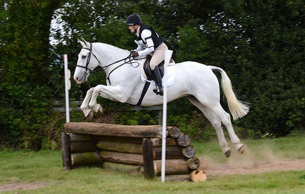 """'Since Harry came to us for his """"retirement"""" he seems to have found a new lease of life and we have taken him to shows, one-day-events and hunter trials. He had only ever hunted before so these competitions were pretty new to him but he absolutely loves them and always comes home with a rosette!' Harriet Laker"""