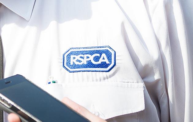 An RSPCA Inspector