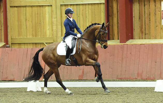 River Rise Escarla pictured competing under Sadie Smith